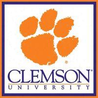Clemson-tigers-paper-cube