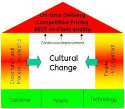 Cultural_change